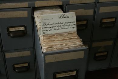 Catálogo Manuscrito