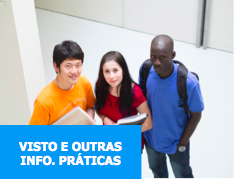 visto-info-icon