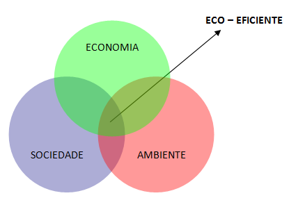 Diagrama Eco-Eficiente