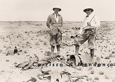 carrisso&mendonca&welwitschia