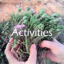 activities_button