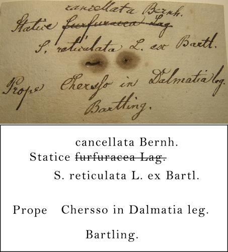 Bartling Transcription