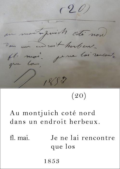 Des Moulins Transcription