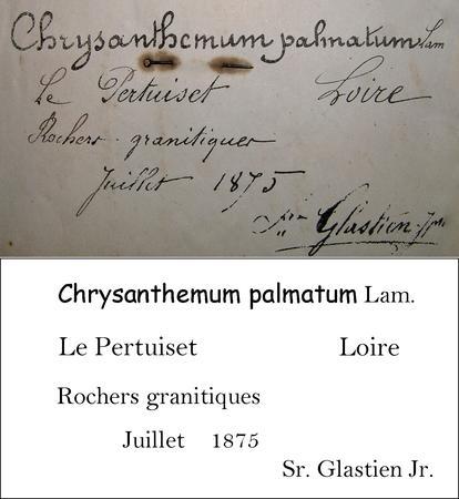 Glastien Transcription