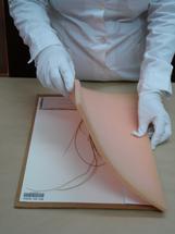Pressing the specimen 2