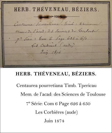 Théveneau Transcription