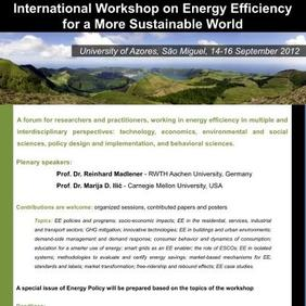 International Workshop on Energy Efficiency for a  More Sustainable World