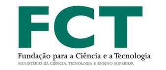 FCTnovoIV