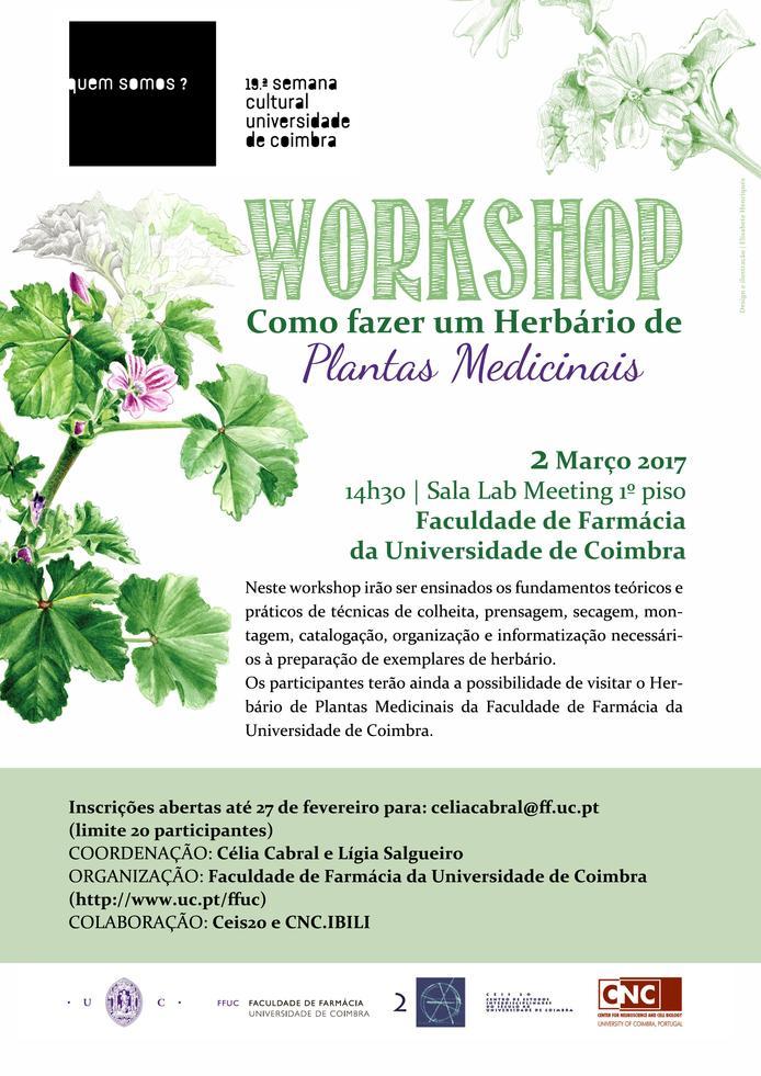 workshop_herbario_plantas_medicinais.jpg