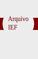 Arquivo_IEF_Icone_final