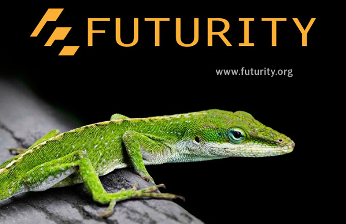 Futurity Research news from top universities.