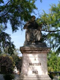 Avellar Brotero