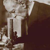 Júlio Henriques microscópio