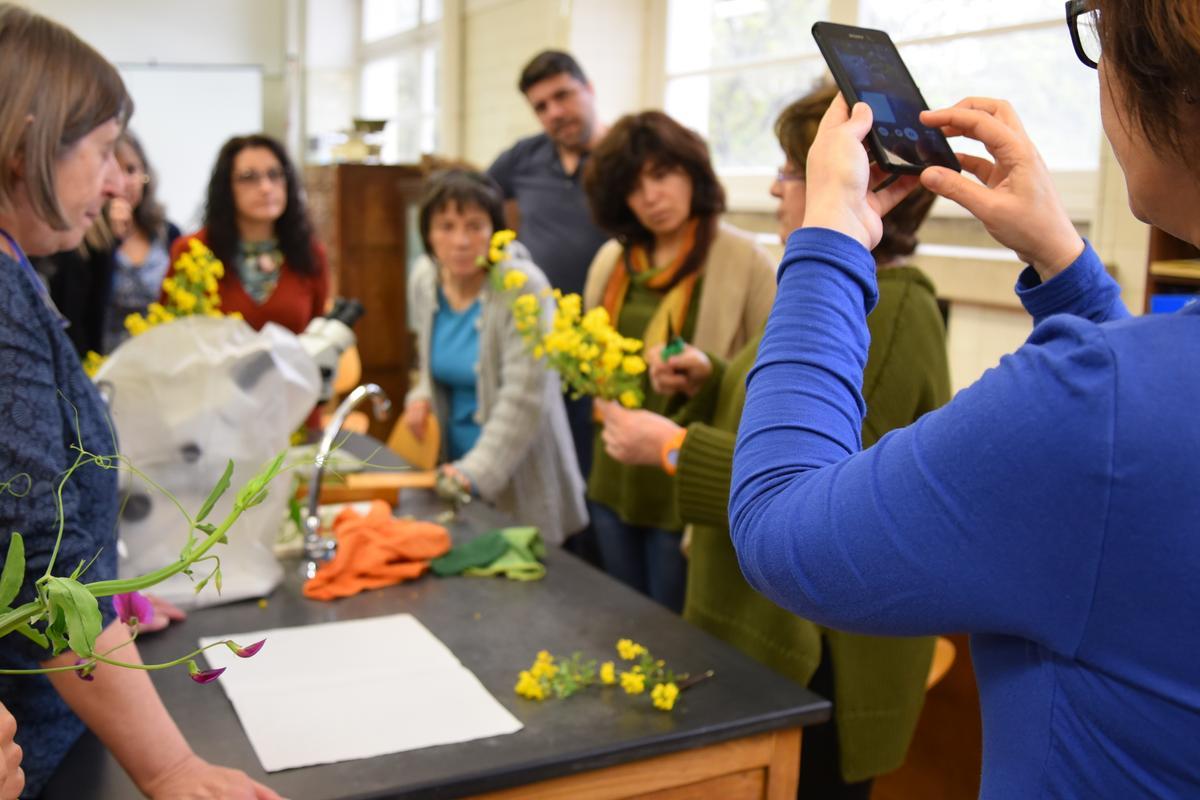 """Oficina para Professores """"Motivar para o conhecimento sobre botânica construindo herbários"""" - reportagem"""