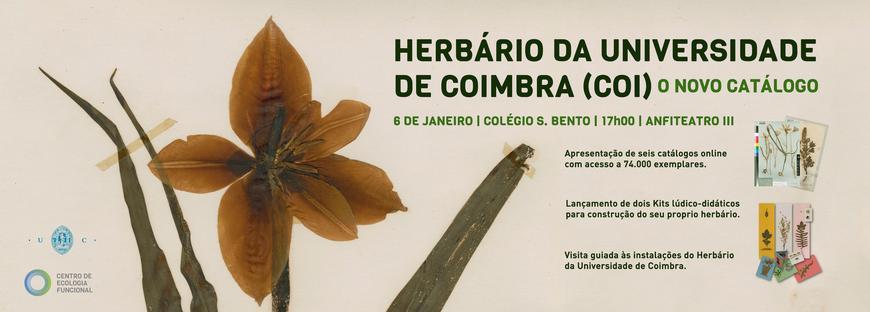 Banner lancamento catálogo
