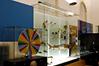 Museu da Ciência UC (6)