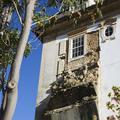 Pormenor da fachada sul do Colégio de São Jerónimo | <i>Detail of the south façade of the College of São Jerónimo</i>